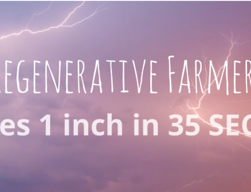 Grounded Growth Members Share How Regenerative Farming Captures the Rain!