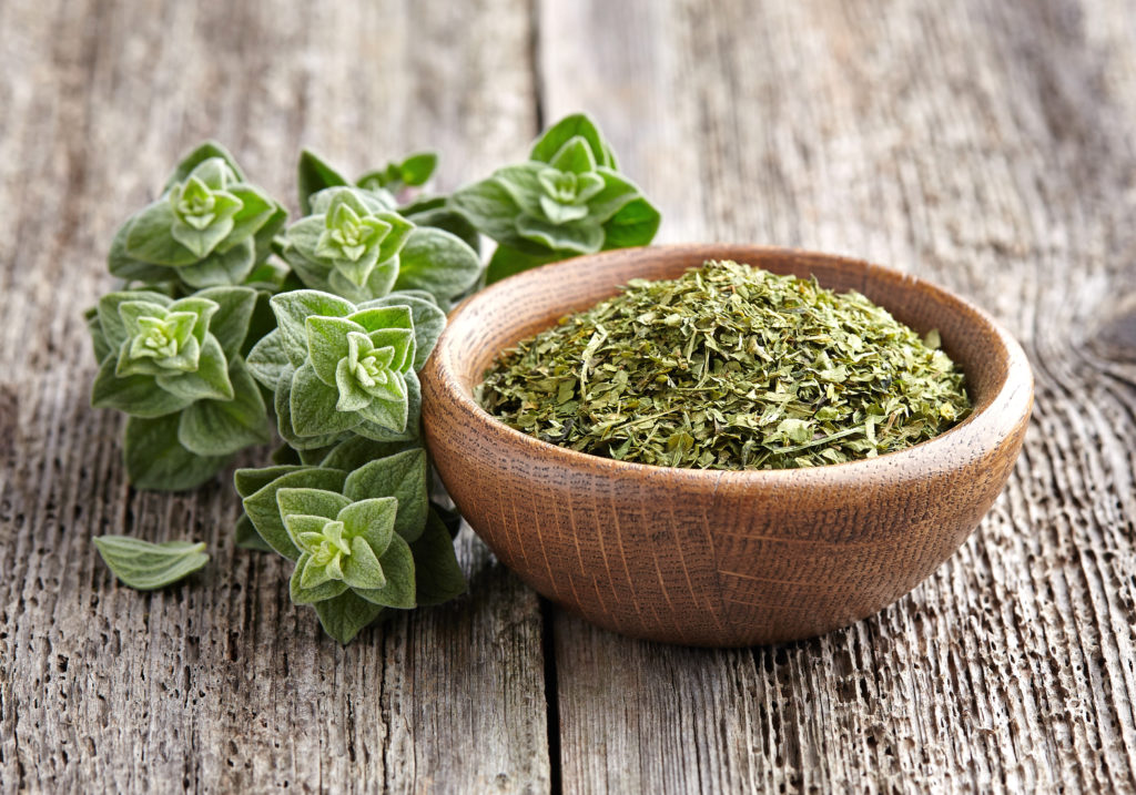 Oregano is one of the crops grown by Grounded Growth farmers